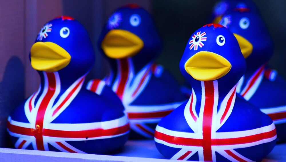 שיחון אנגלי-עברי. ברווזים בריטיים