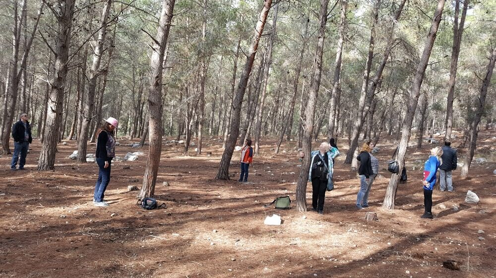 הקשבה לעצים ביער המגינים בכרמי יוסף