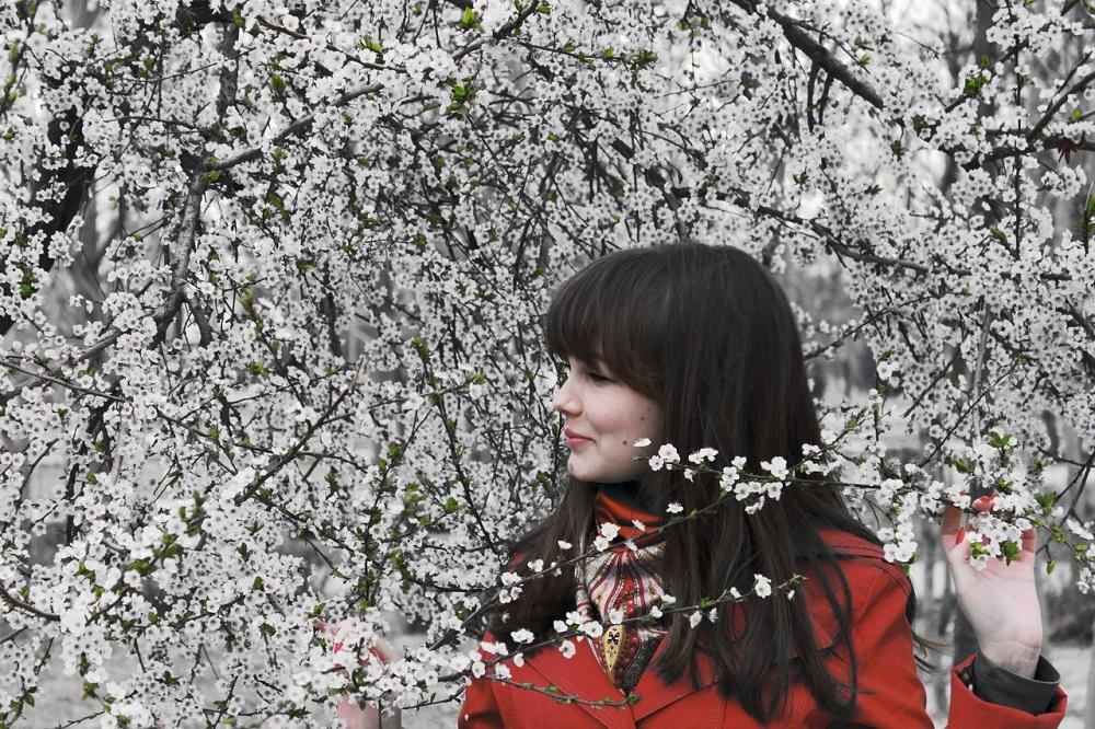מה לעשות בלונדון בסופשבוע: גלו את עצי הדובדבן בסיור מעניין בלונדון