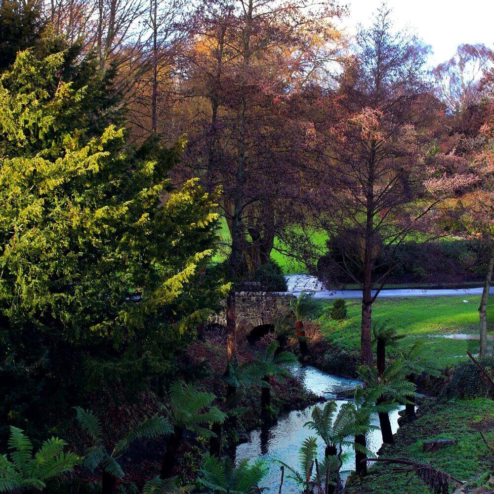 טיול באנגליה טירות בבריטניה: הפארק בטירת לידס. לא תרגישו את הצפיפות הגדולה משום שהתיירים הרבים מתפרשים על פני הגנים העצומים. הגנים של טירת לידס. צילום: סיון שפירא