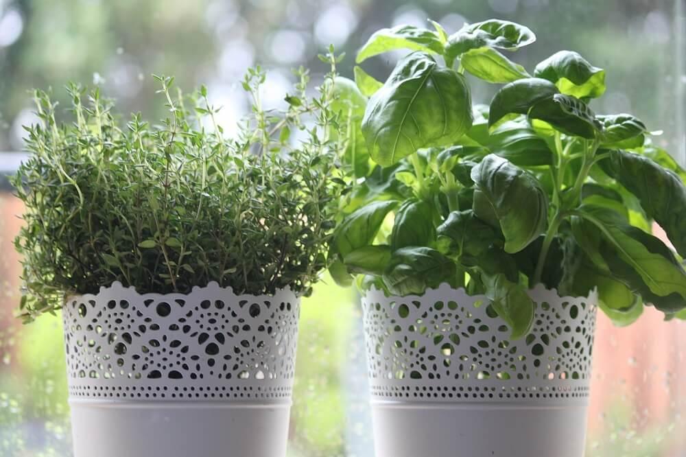 אדניות עם צמחי תבלין - אריאנה שטייגמן היא דיקלאטרית ומארגנת בתים, המתמחה במיקסום המרחב וסידור אסתטי ופרקטי של הבית. ClutterBug